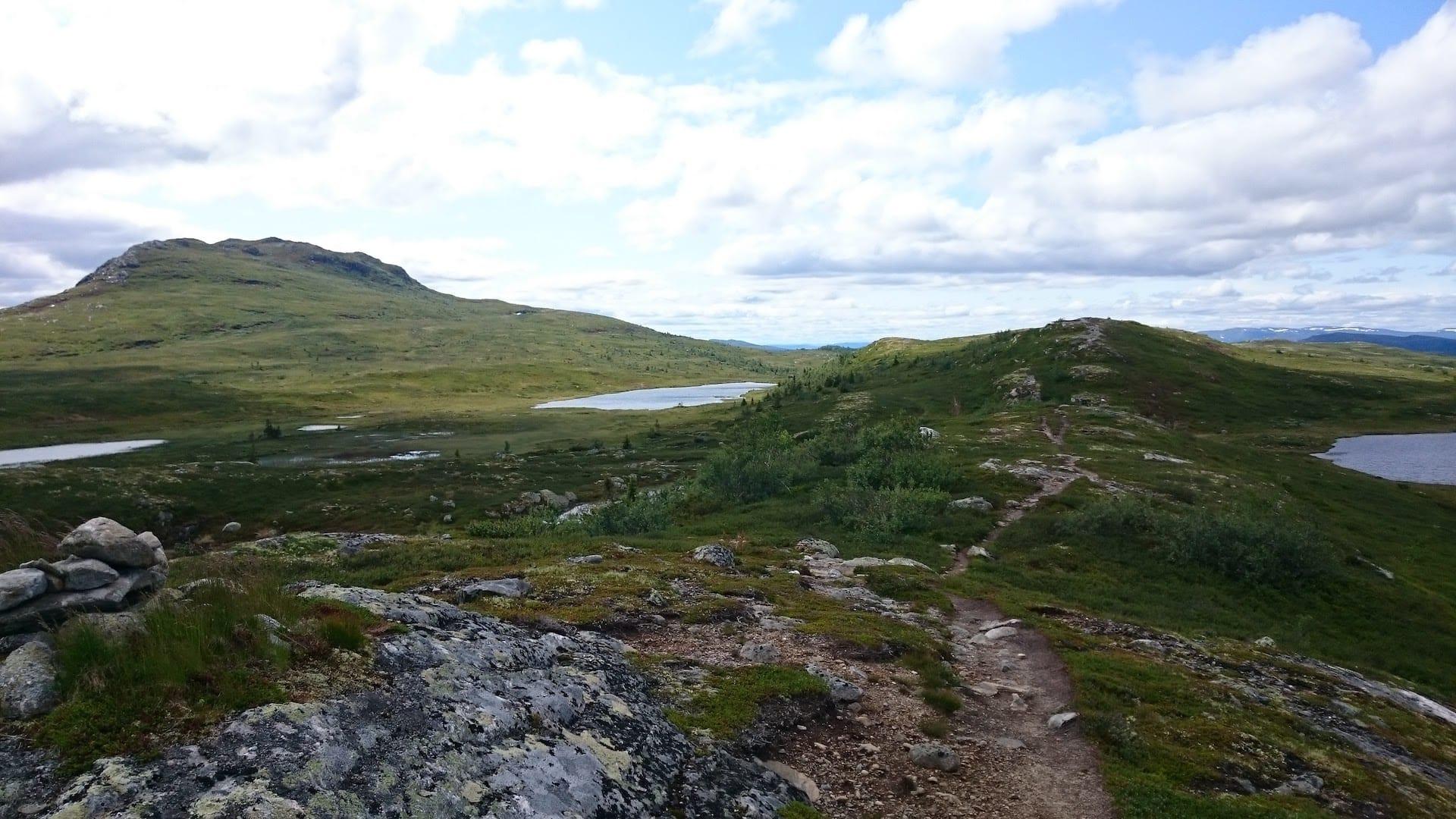 Stien sydover fra Hesteryggen