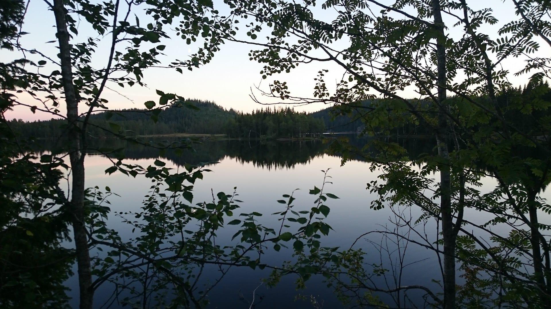 Kveldsstemning ved Damsortungen